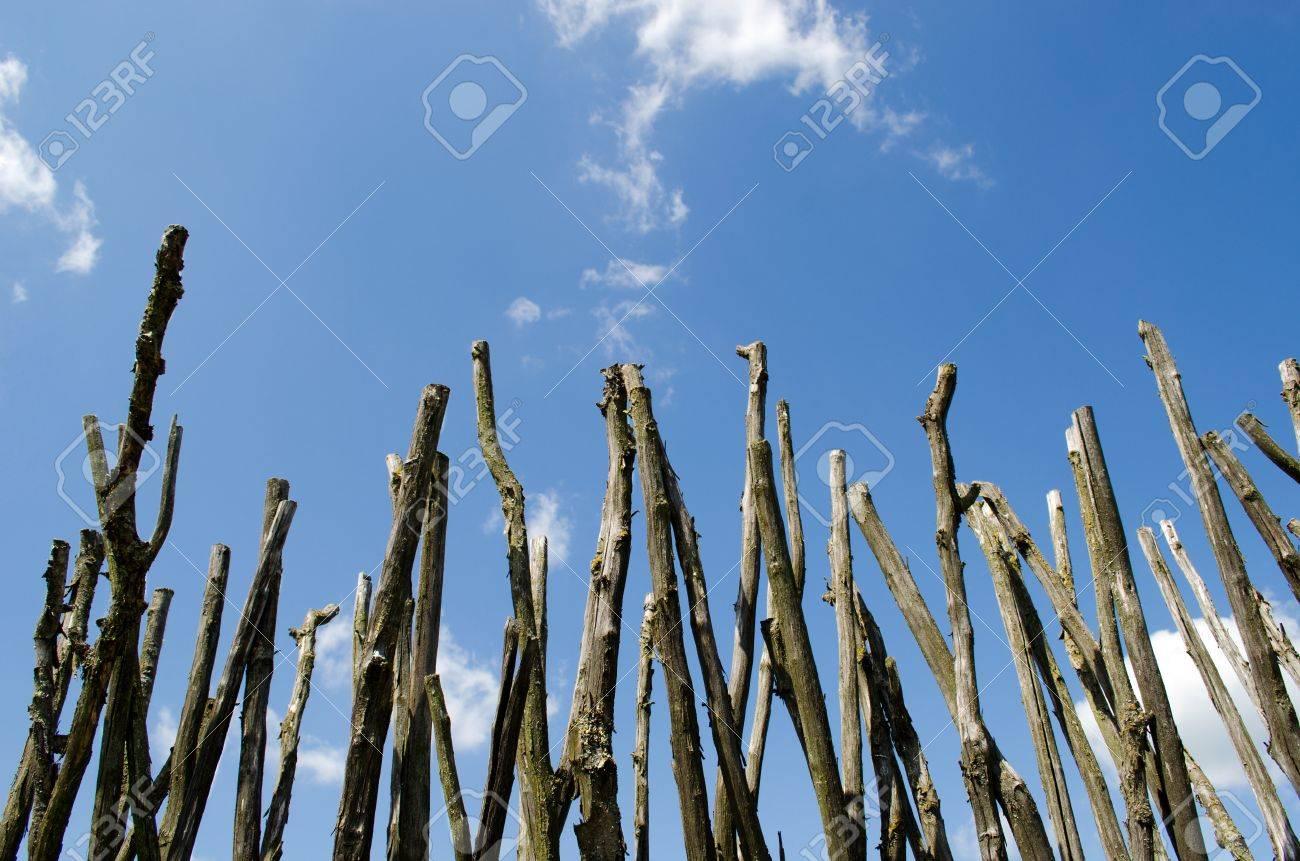Zaun Aus Asten Am Blauen Himmel Bewolkt Hintergrund Lizenzfreie