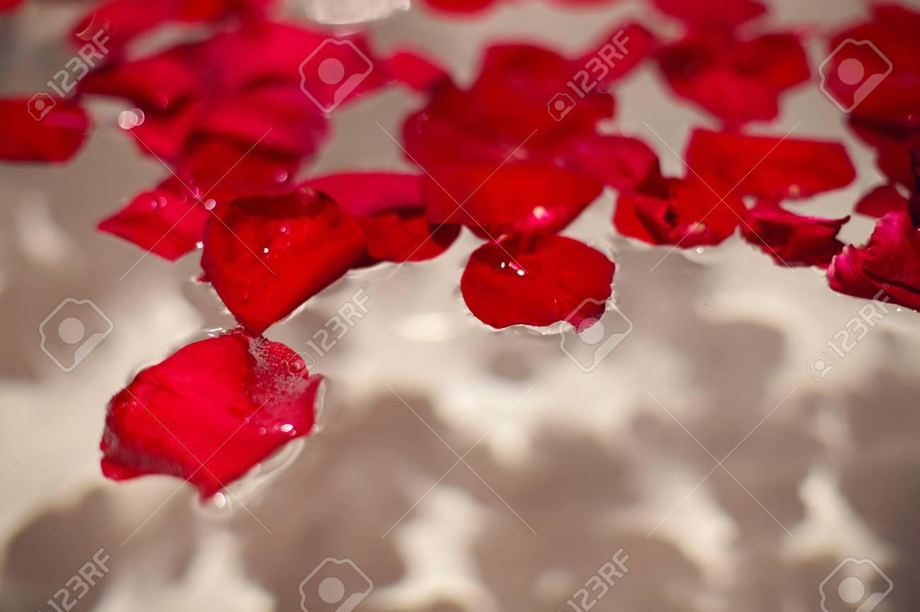 Petali di rose rosse in un bagno bianco con piastrelle nere e