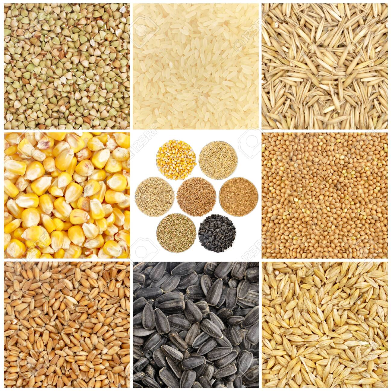 Cereals and basic food staple isolated on white background - 150229336