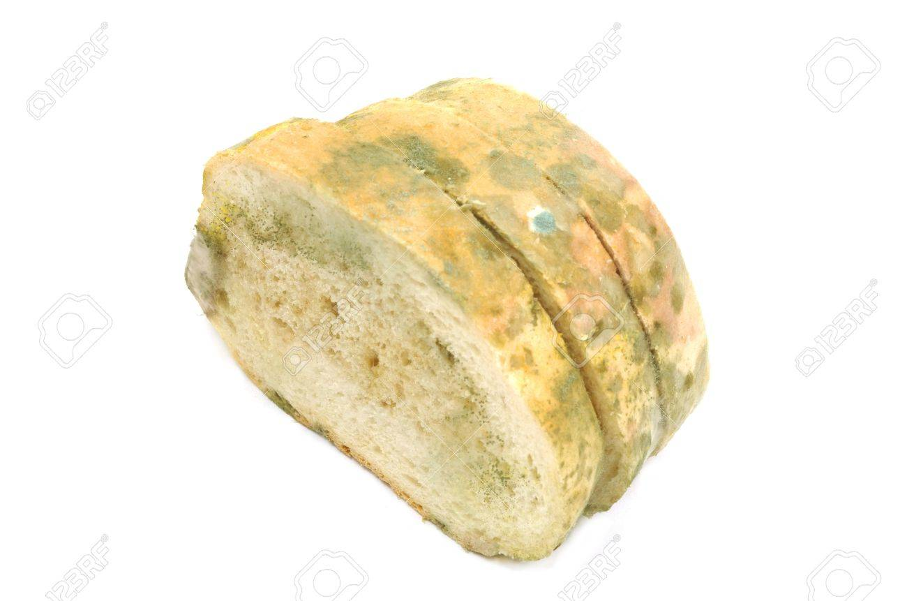 Slices of moulded bread isolated on white Stock Photo - 13530987