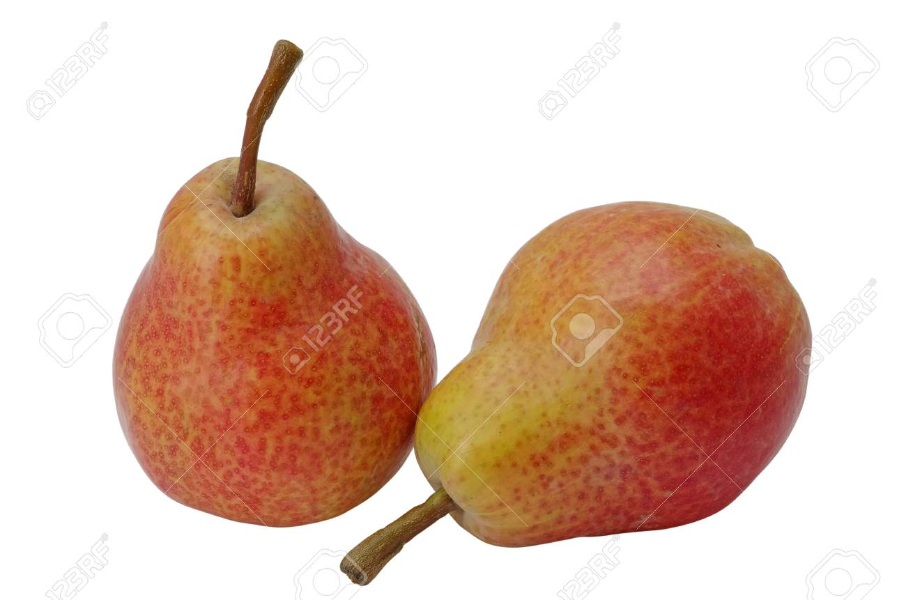 Two pears isolated on a white background Stock Photo - 14237783