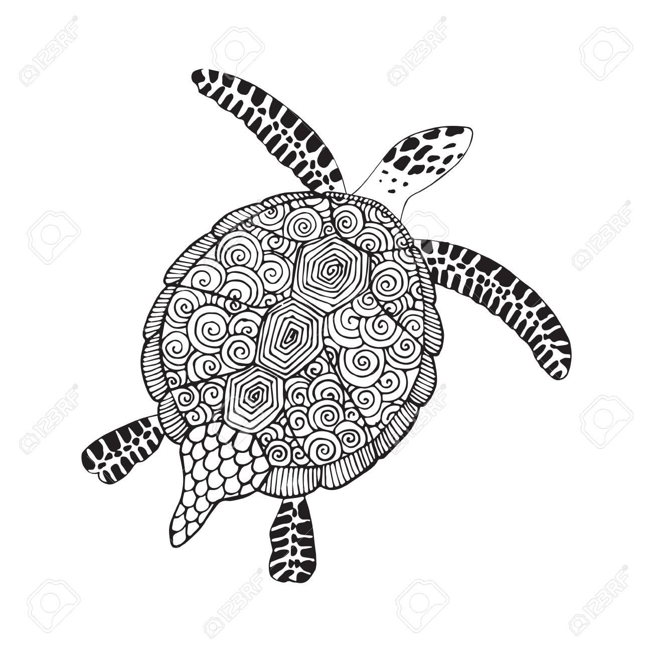 Tortuga Marina. Ilustración De Vector Dibujado A Mano. Tortuga ...