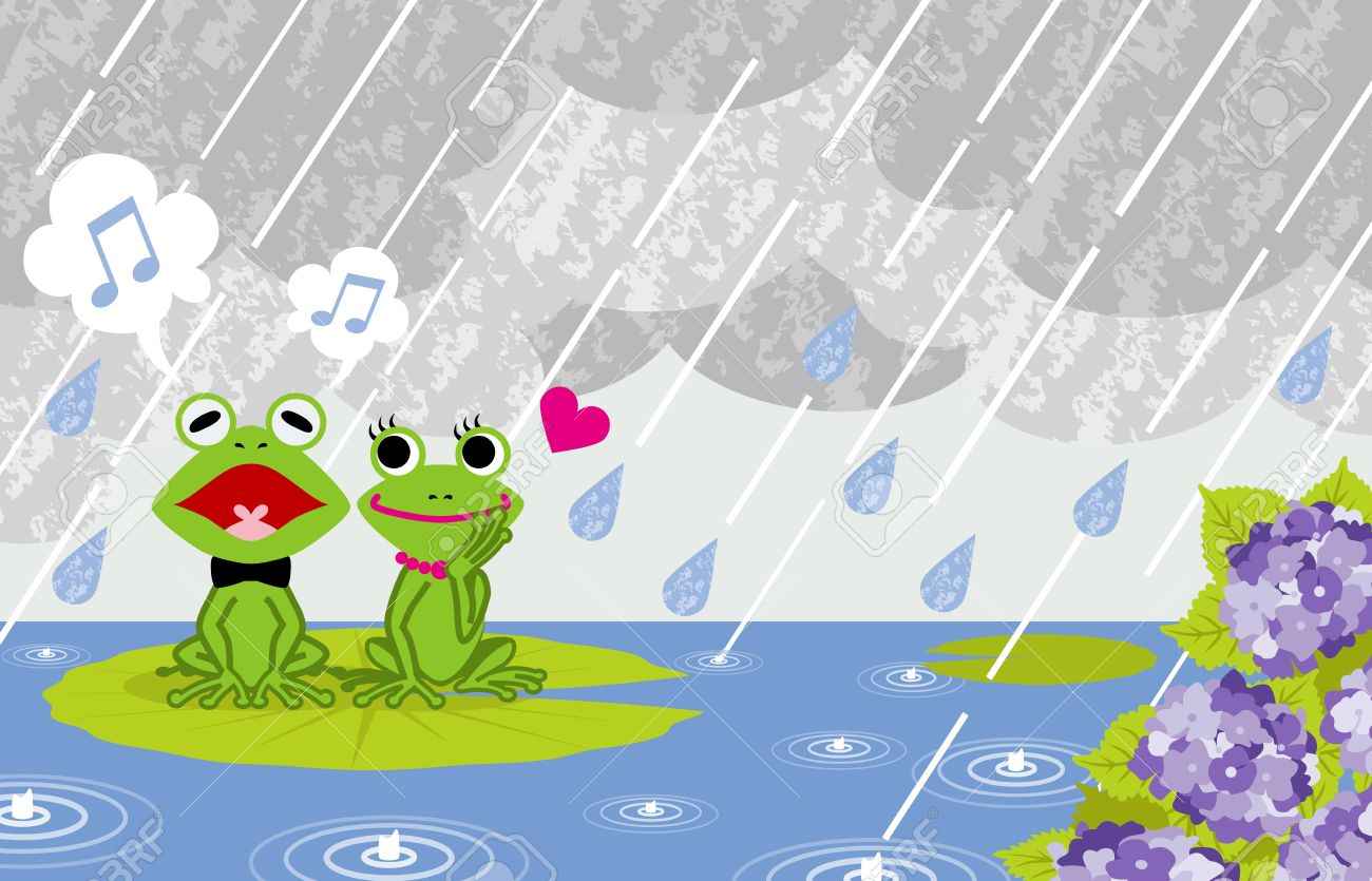 Frog couple in rainy Pond Stock Vector - 18812726