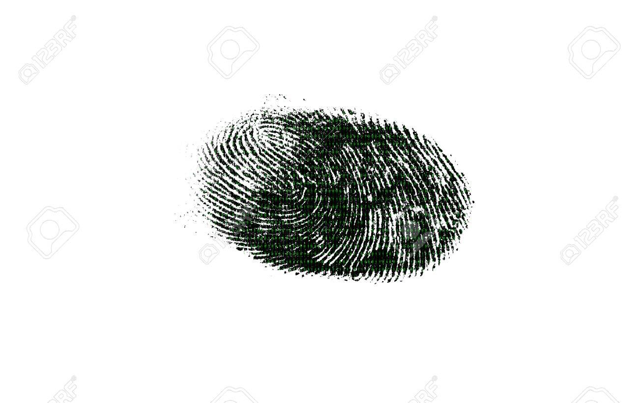 Qui Ci Sono Due Fotografie. Uno è Una Matrice Creata Digitalmente E L altro  è Un Fingerprinting. La Foto Della Matrice è Preparata Nel Software Di ... 280d7648dbee