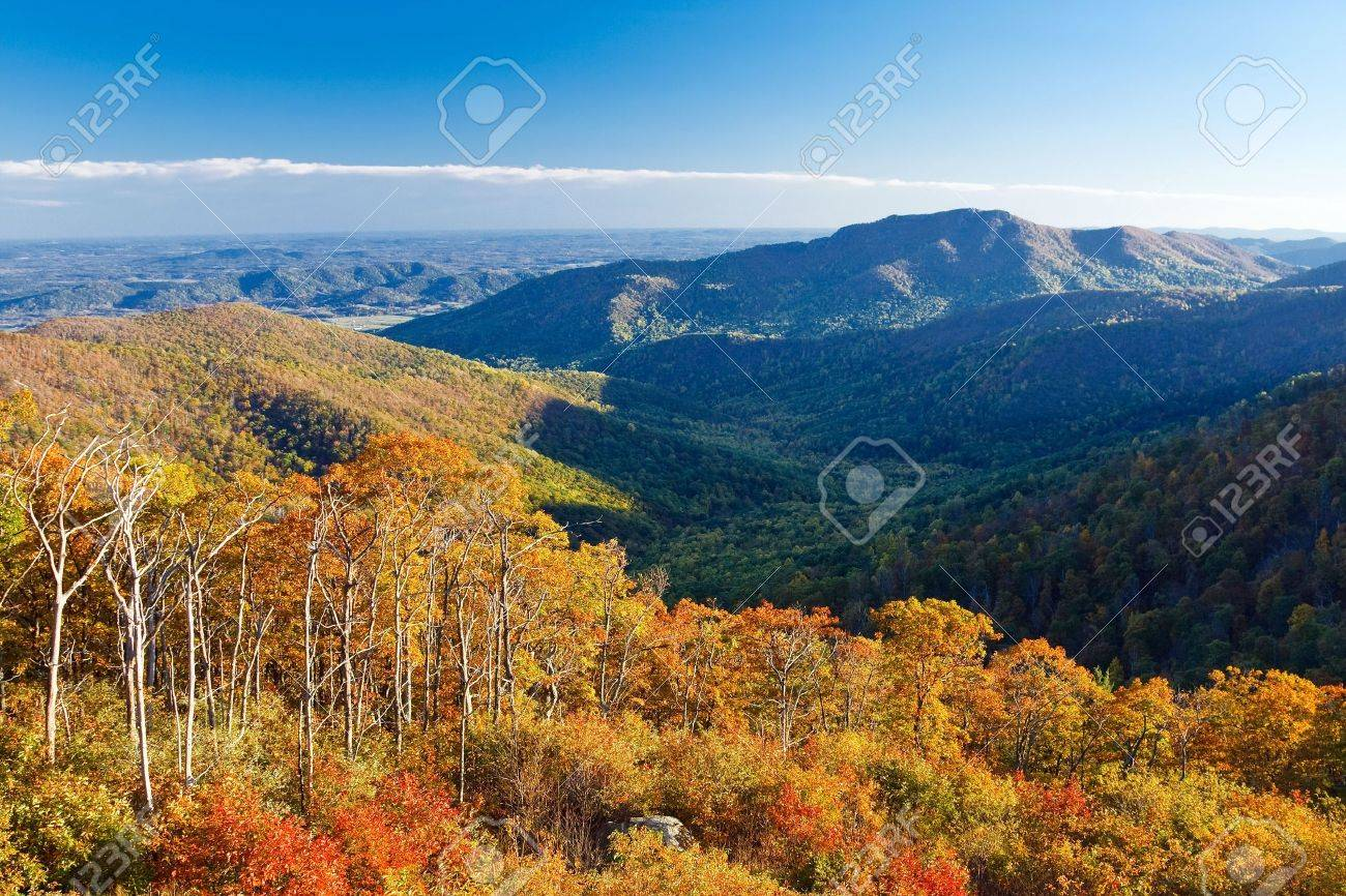 Autumn landscape in Shenandoah National park Stock Photo - 5324046