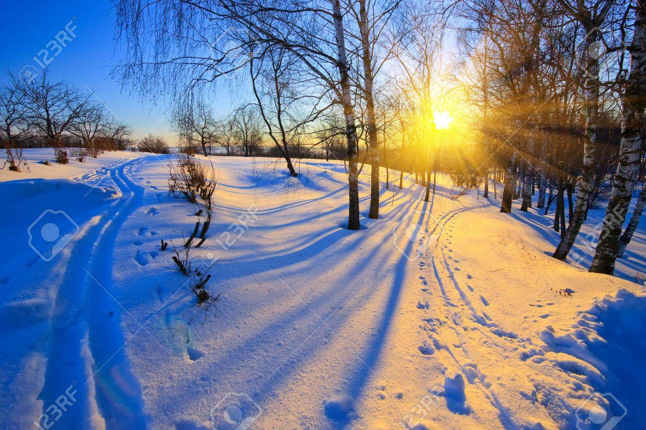 Beautiful sunset in winter park Stock Photo - 5541414