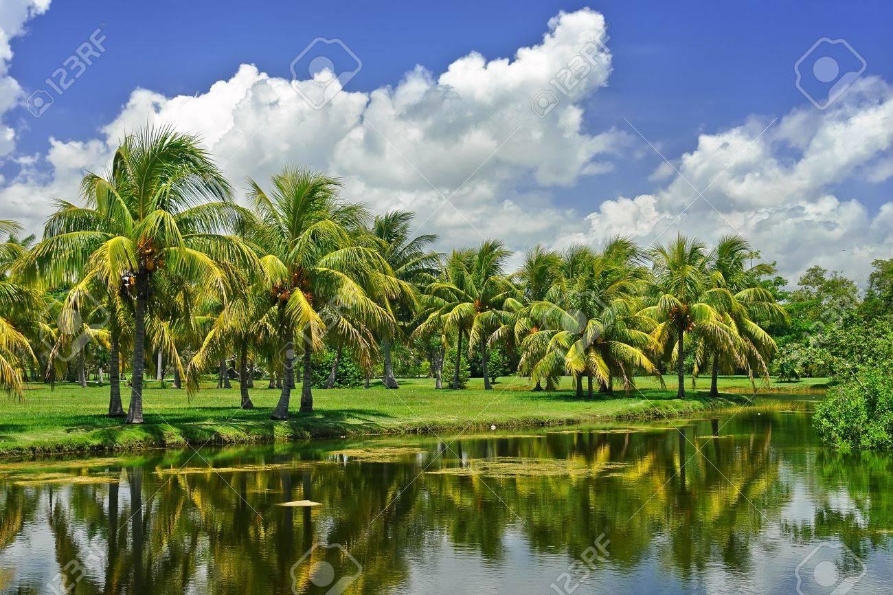 Fairchild Tropical Botanic Garden Miami Fairchild Tropical Botanic