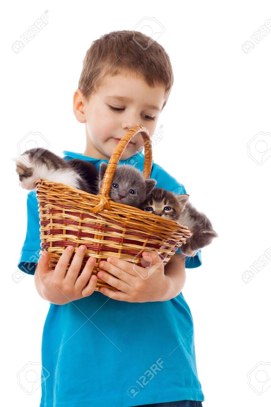 Little boy with kittens in wicker, isolated on white Stock Photo - 11881757