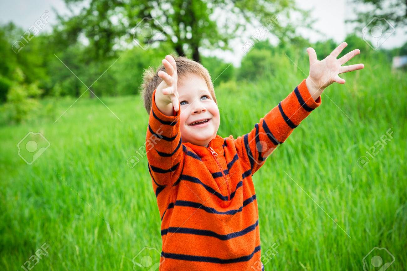 c6c3d42f1c8f1 Happy little boy on green grass field with raised hands Stock Photo -  39344982