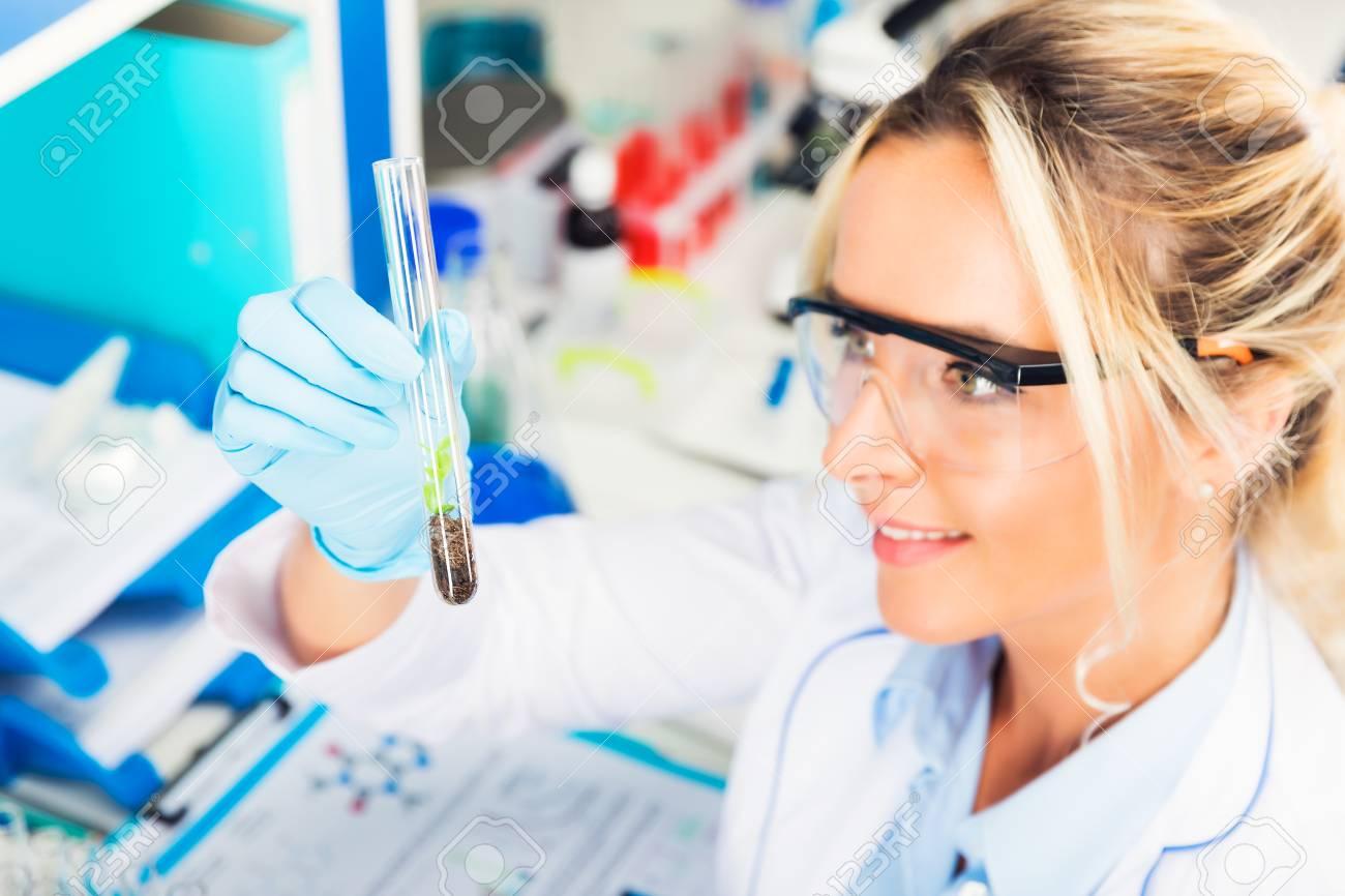 Banque d images - Jeune femme séduisante scientifique avec des lunettes de protection  et des gants examinant tube à essai avec une plante artificiellement ... 87f5f32b363c