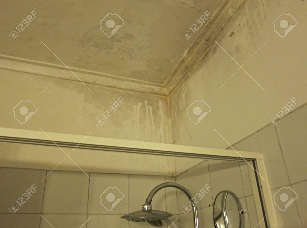 Schwere Wasserschäden Verursachen Schimmel Und Feuchtigkeit An ...