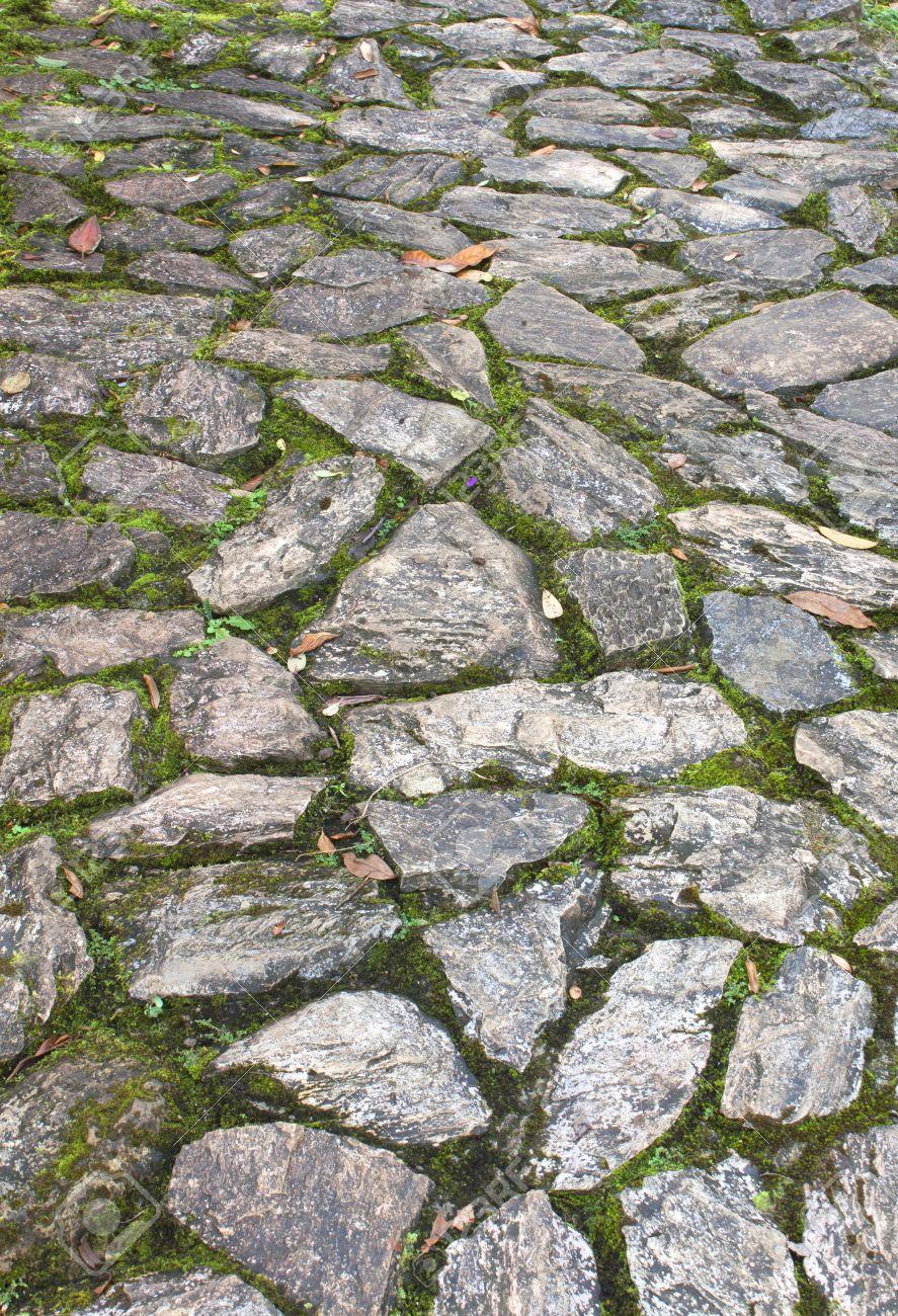 suelo de piedra con las hojas cadas y las piedras cubiertas de musgo foto de archivo