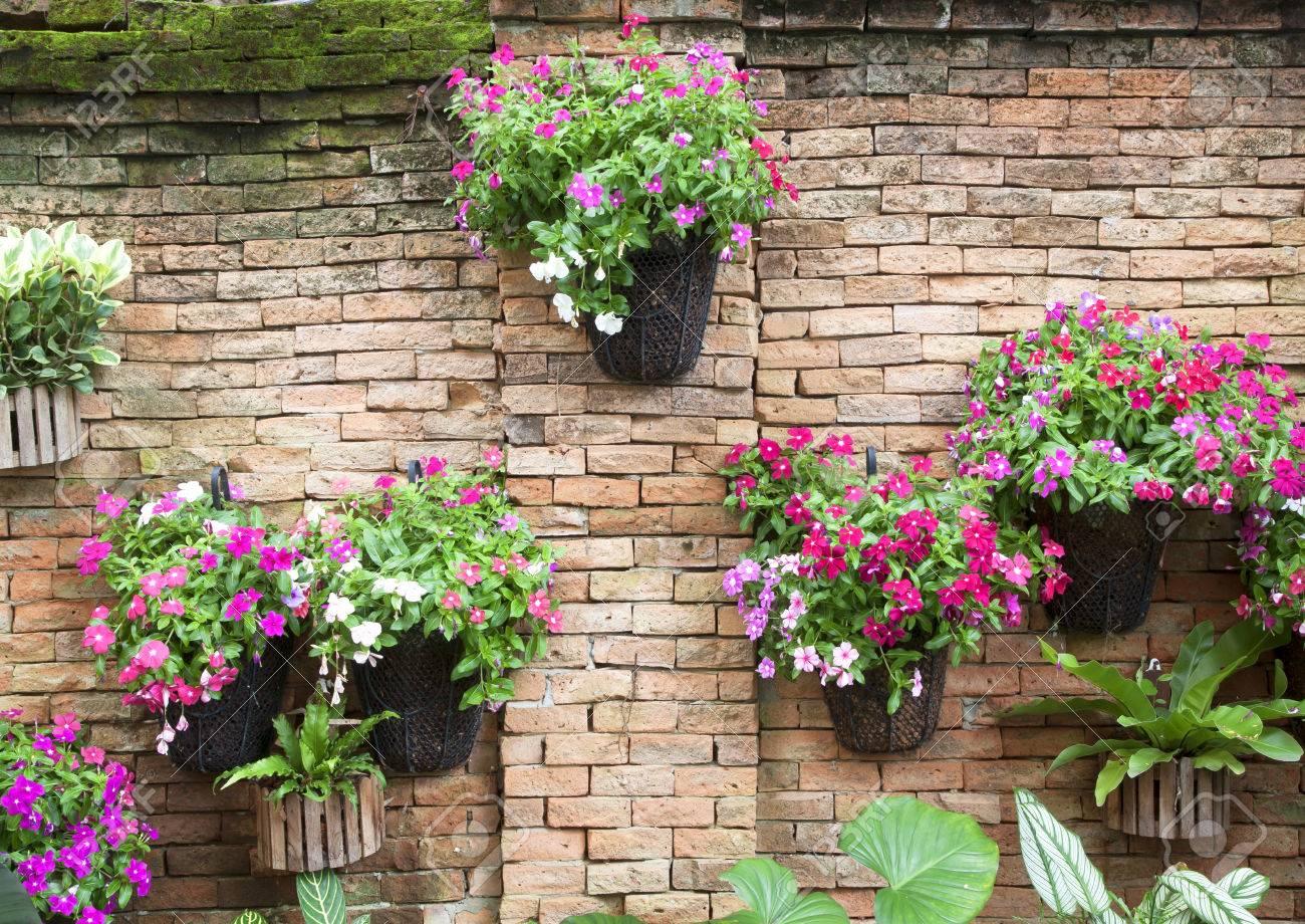 Fleurs Colorees Artificielles Pots Accrocher Sur Le Mur Banque D