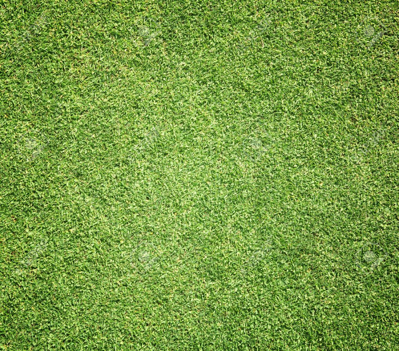 green grass football field grass texture seamless background of green grass golf course football field background texture pattern stock photo of green grass golf course football field