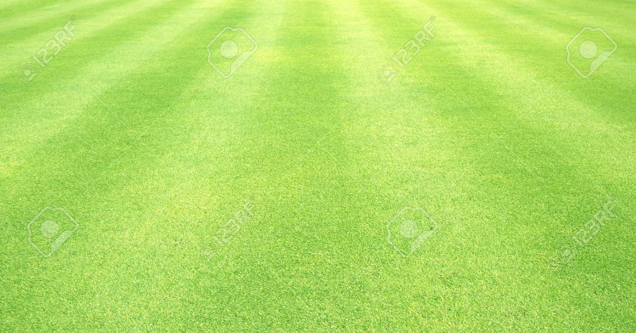 natural background of green grass small grass football ground stock