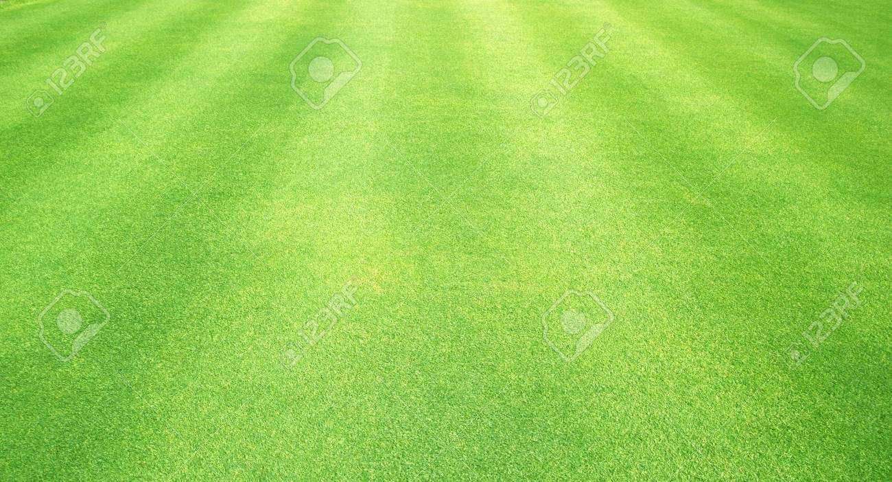green grass football field short grass natural background of green grass small football ground stock photo 85358105 background of green grass football ground