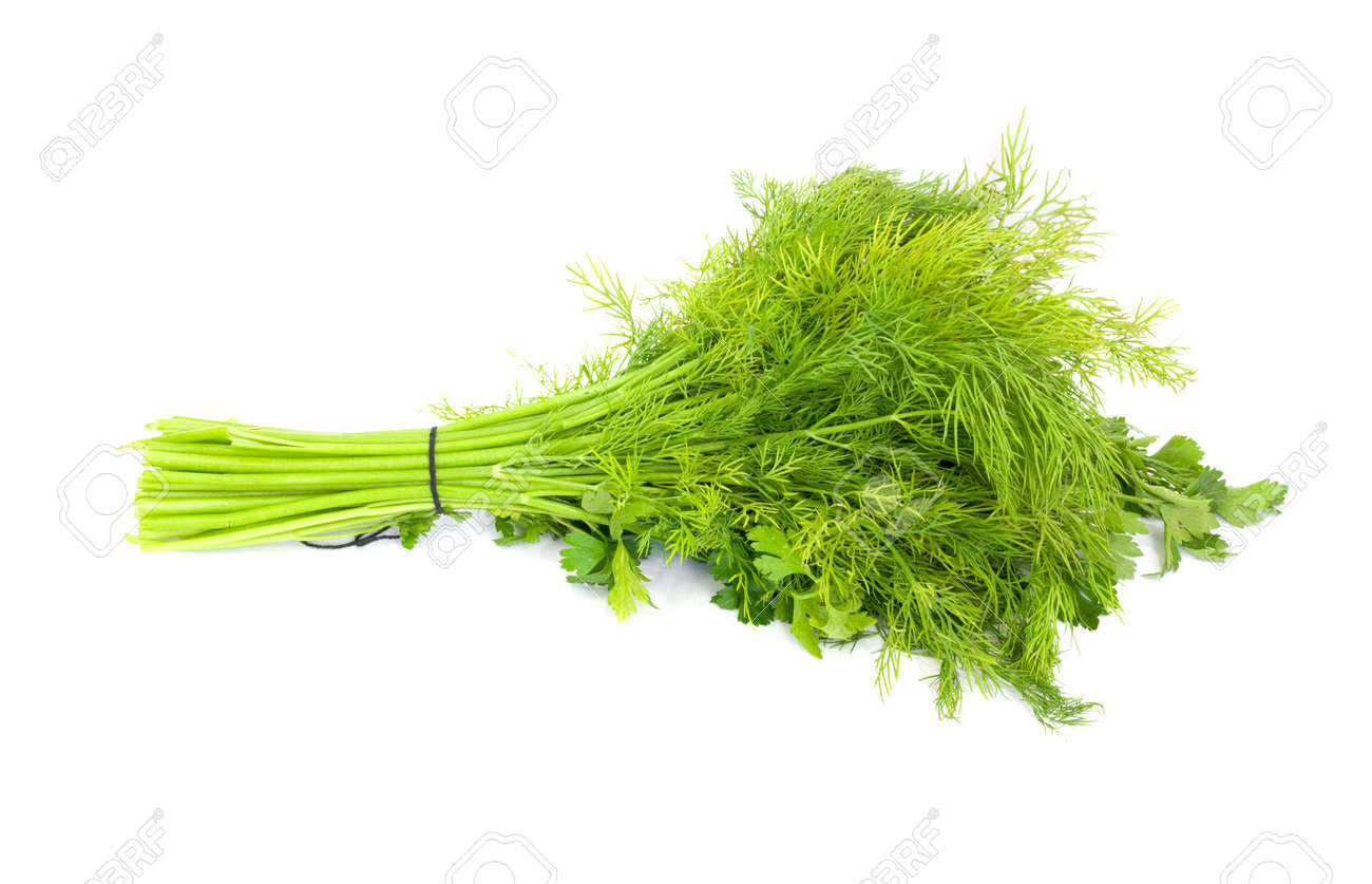 dill and parsley isolated on a white background Stock Photo - 9466399