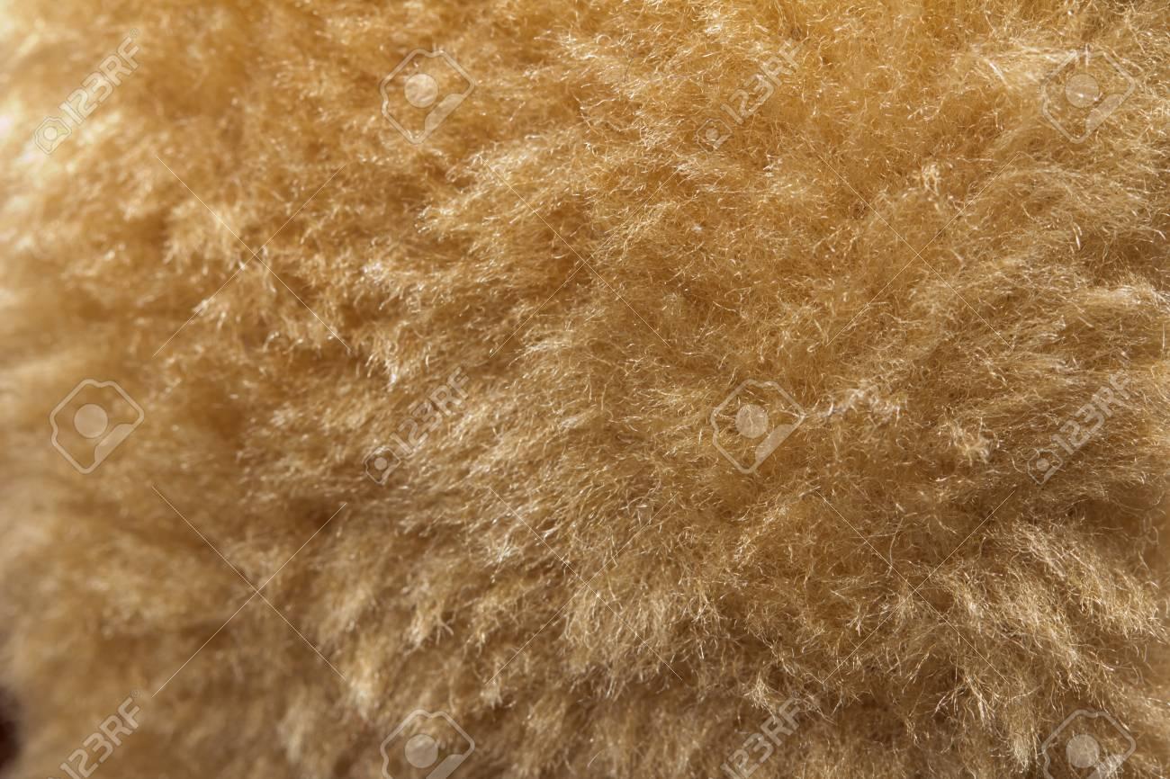 background of fur. macro Stock Photo - 17366160