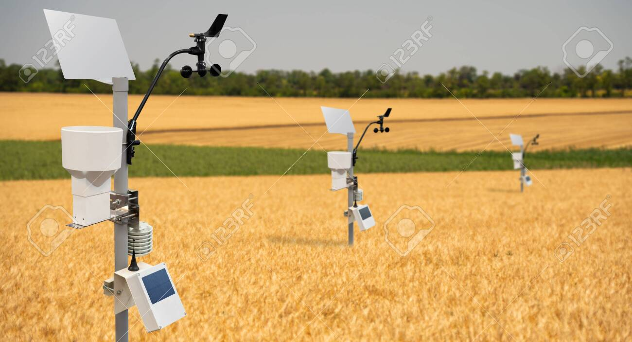 Weather station in a wheat field. Precision farming equipment - 149771866