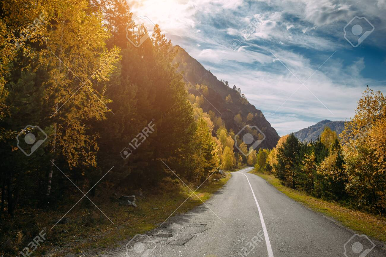 Asphalt mountain road among the yellow autumn trees and high rocks, in the bright rays of the sun. Road trip to the most beautiful places in Russia. - 147431203