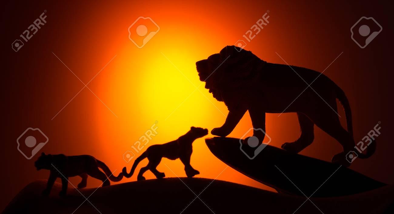 Silhouette Der Afrikanische Männliche Und Weibliche Löwen Gegen ...