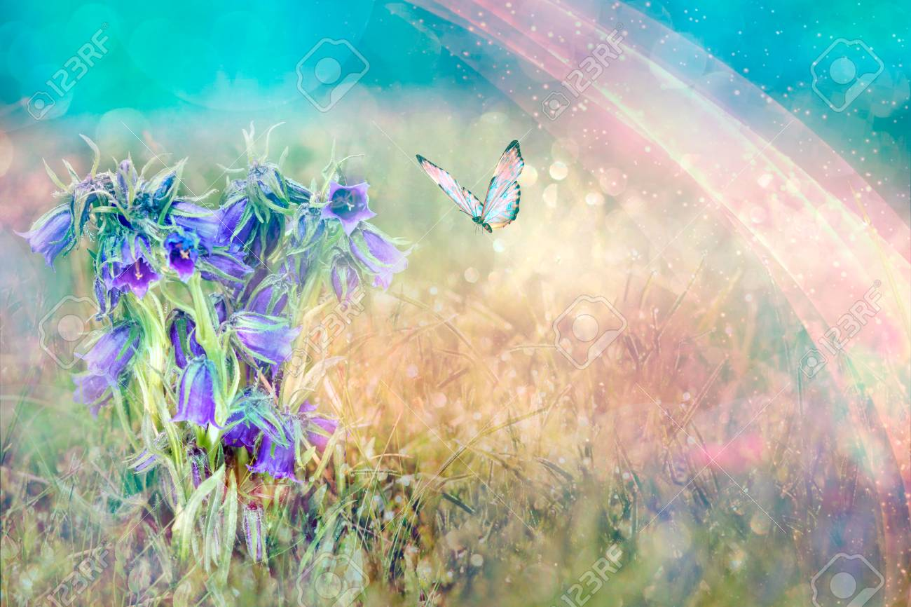 Beautiful Blue Flowers Bell And Butterfly In Spring Nature Outdoors Stock Photo Picture And Royalty Free Image Image 120769104,Tapered Rectangular Lamp Shades Uk
