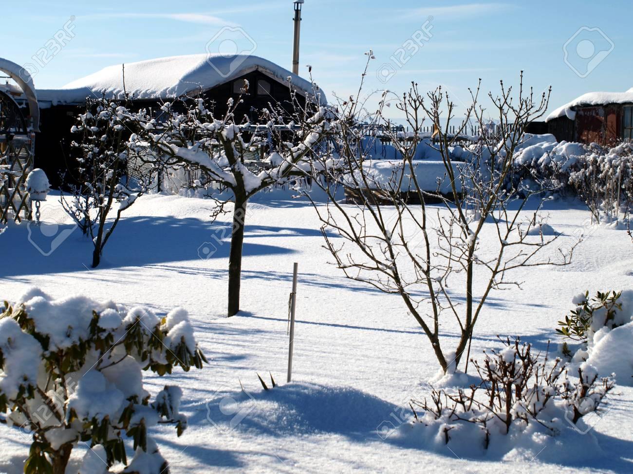 Garten Im Winter garten im winter stock photo picture and royalty free image image