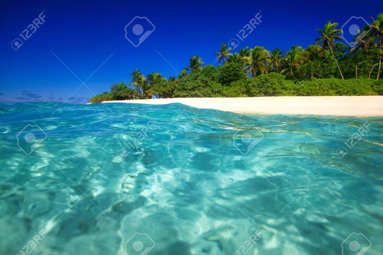 Tropical Island With A Paradise Beach And Palm Trees Fiji Islands