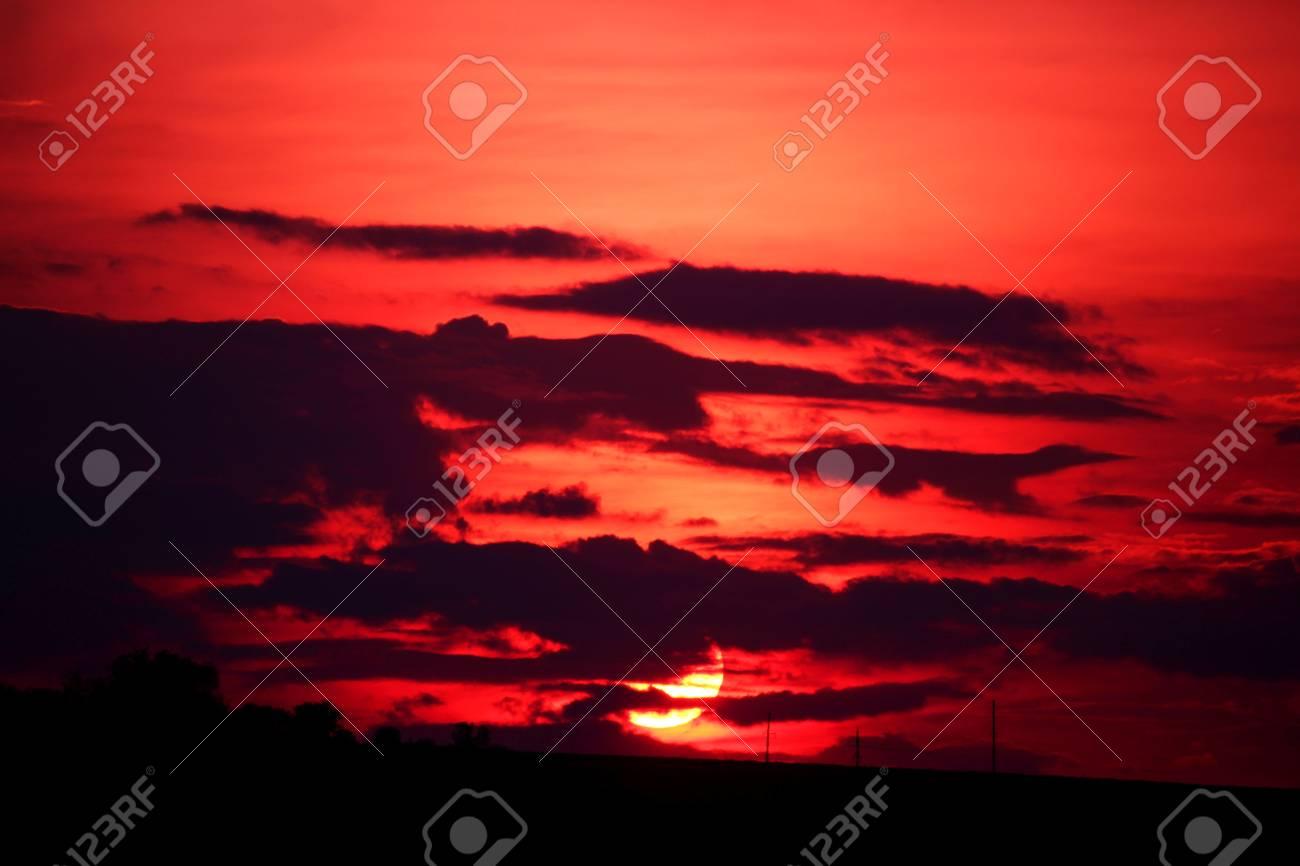 Purple Sunset - 58113163