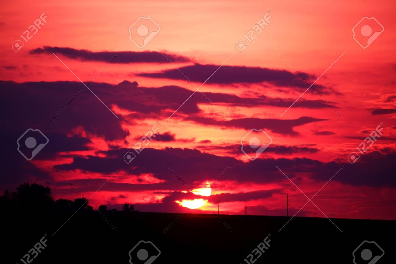 Purple Sunset - 58113172