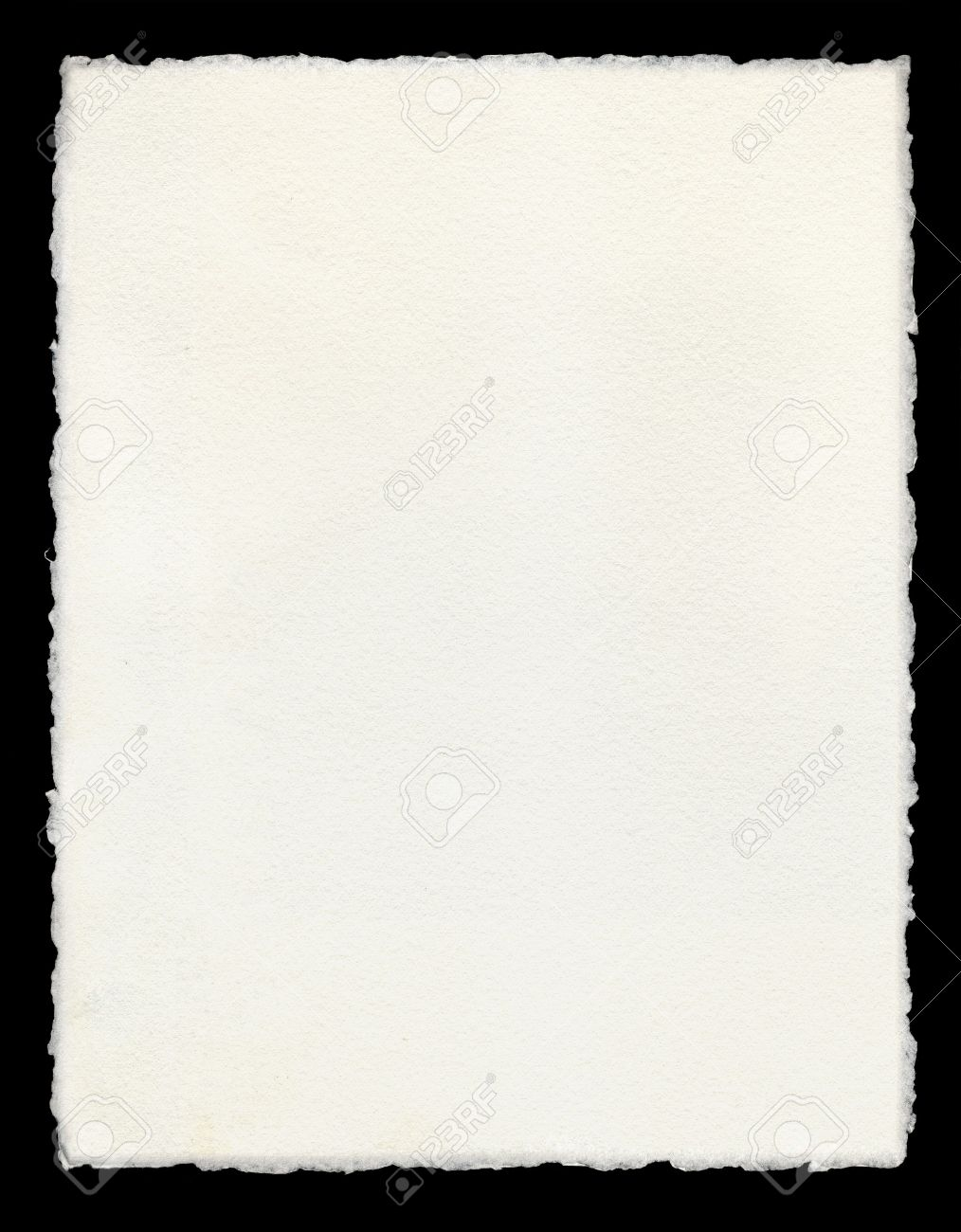 Watercolor paper with true deckled edges. - 10032628