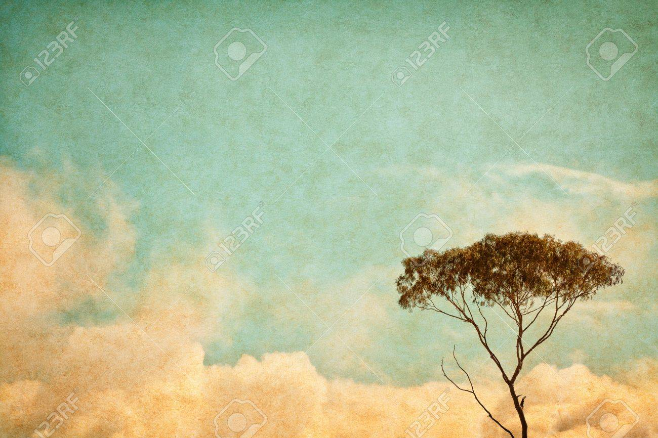 A eucalyptus tree and clouds done in a vintage style.  Image has a pleasing paper texture and grain at 100%. Stock Photo - 13116395