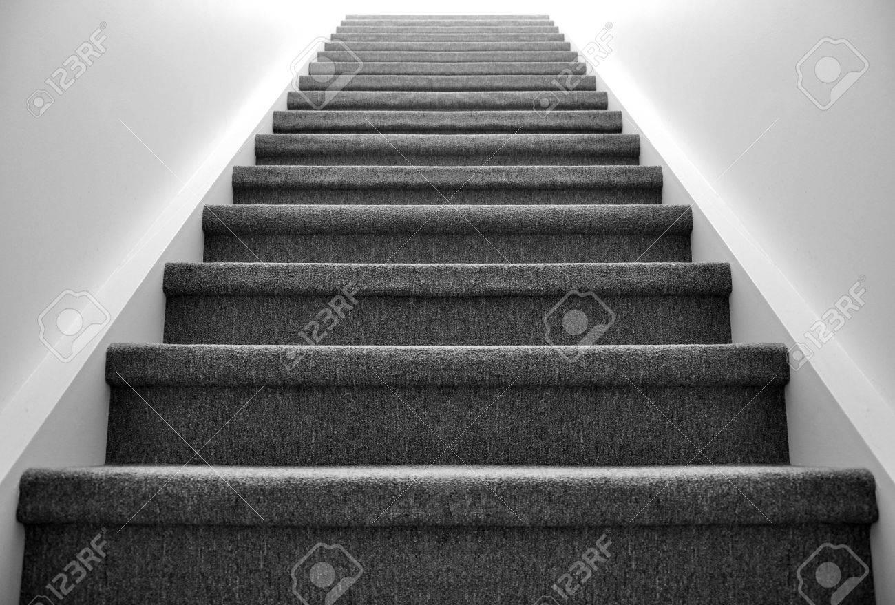 Noir Et Blanc Voir Un Escalier Recouvert De Moquette Qui Mène à La Lumière