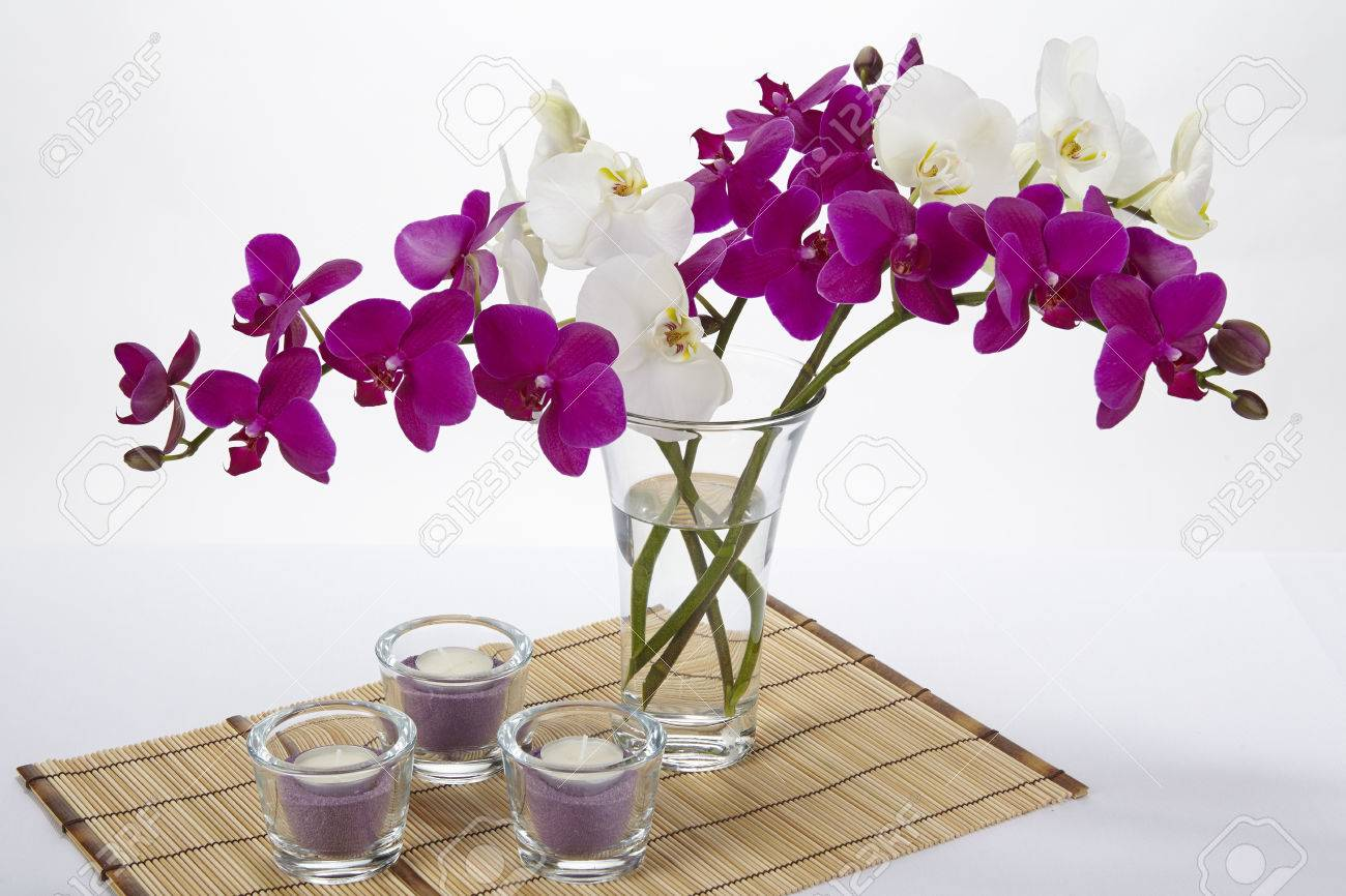 A bouquet of white and purple orchids in a vase the vase is a bouquet of white and purple orchids in a vase the vase is standing on a reviewsmspy