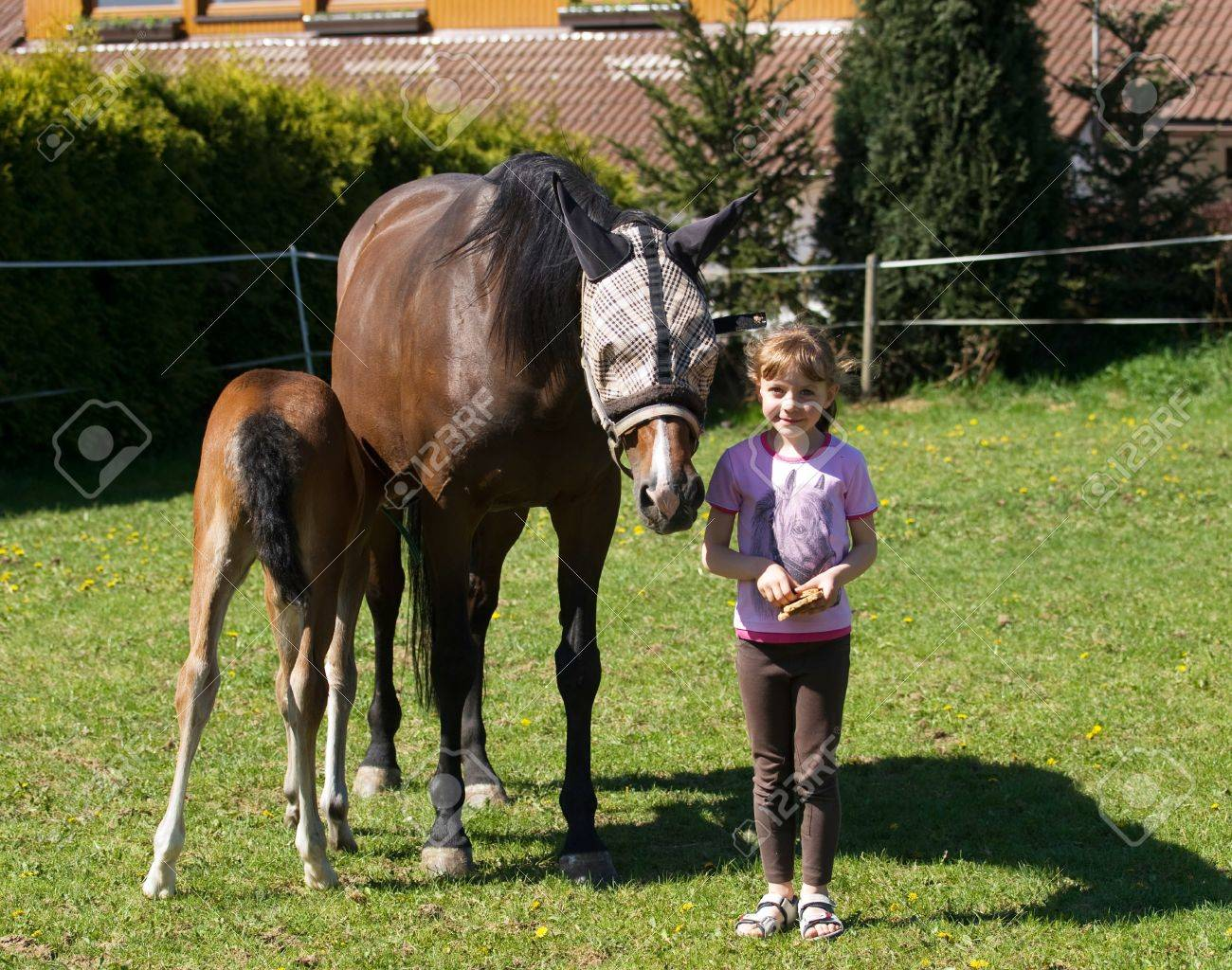 Girl with mare and foal on pasture Stock Photo - 17133360