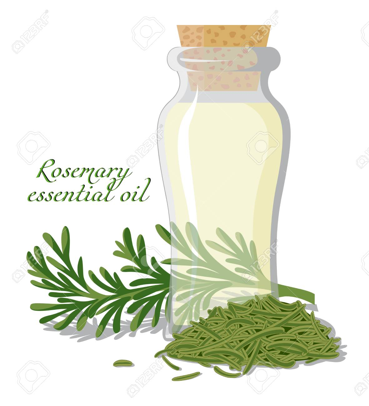A bottle of essential oil, shown between a fresh sprig and dried rosemary leaves - 109685370
