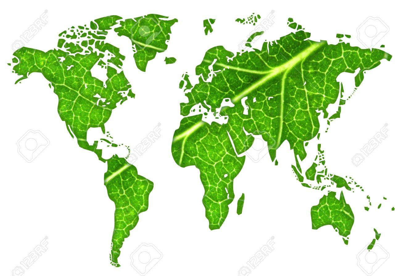 macro of a green maple leaf cut out in the shape of the continents