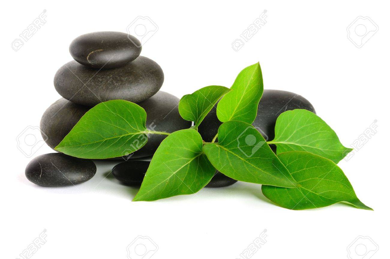 Zen stones and plant on the white background Stock Photo - 7184089
