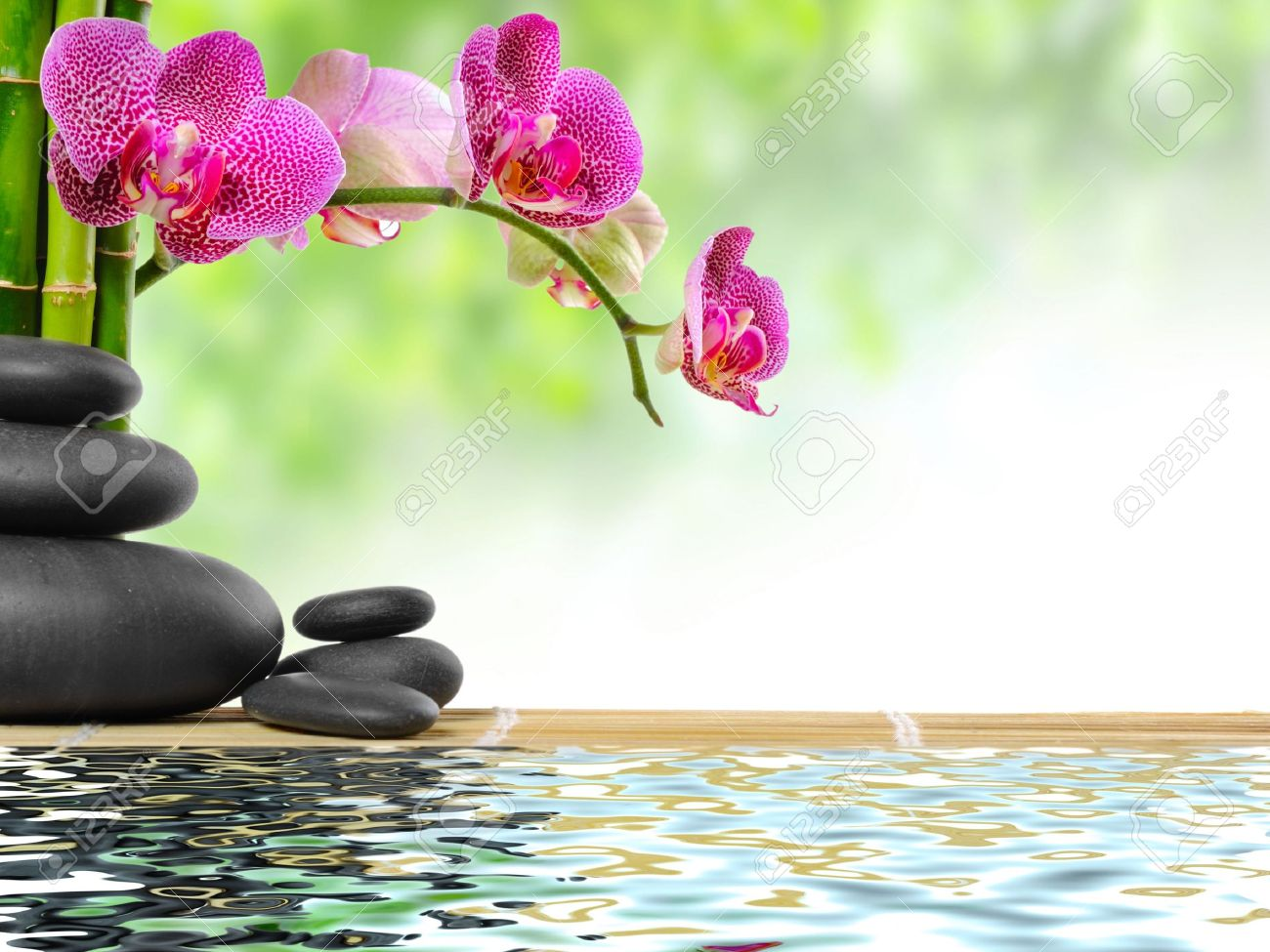 Zen Basalt Stones And Bamboo With Dew Stock Photo Picture And Royalty Free Image Image 10099158
