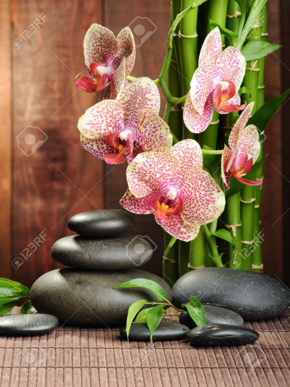 zen basalt stones and orchid on the wood Stock Photo - 10386124