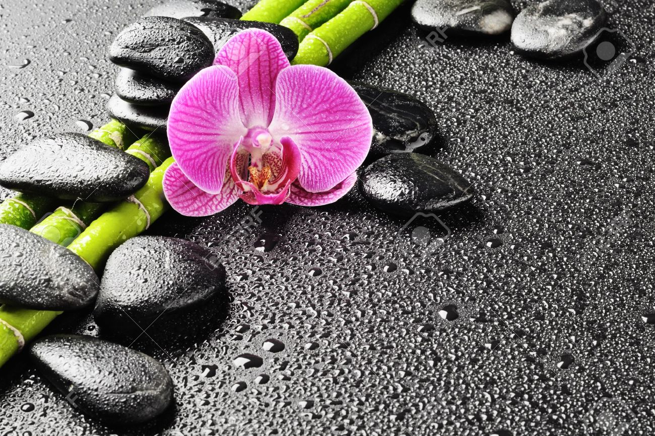 spa concept with zen stones and orchid Stock Photo - 10532918