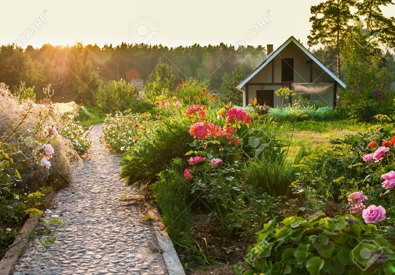 Garden Images Stock Pictures Royalty Free Garden Photos And