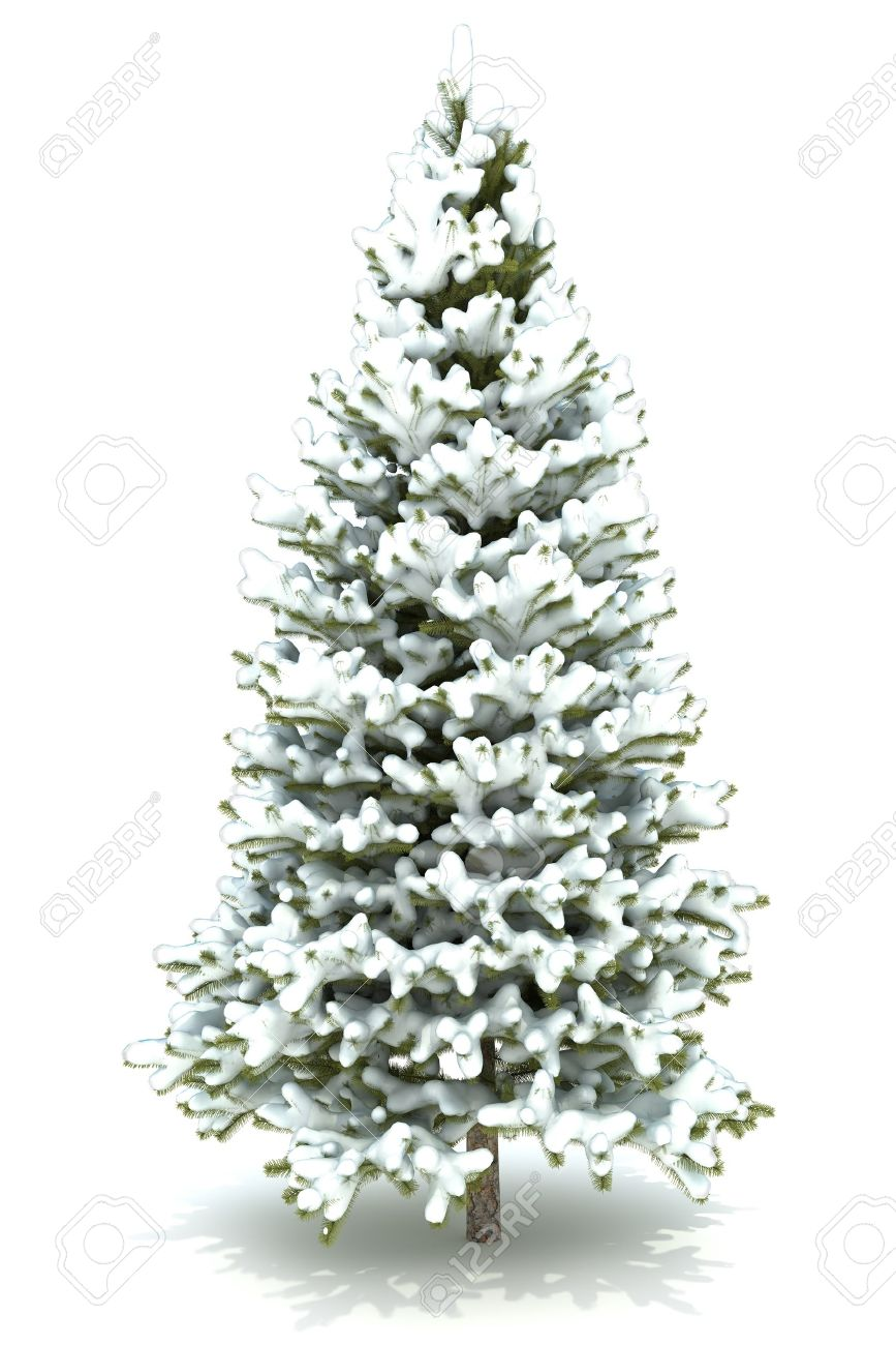 Christmas Tree Covered With Snow.Isolated On A White Background ...