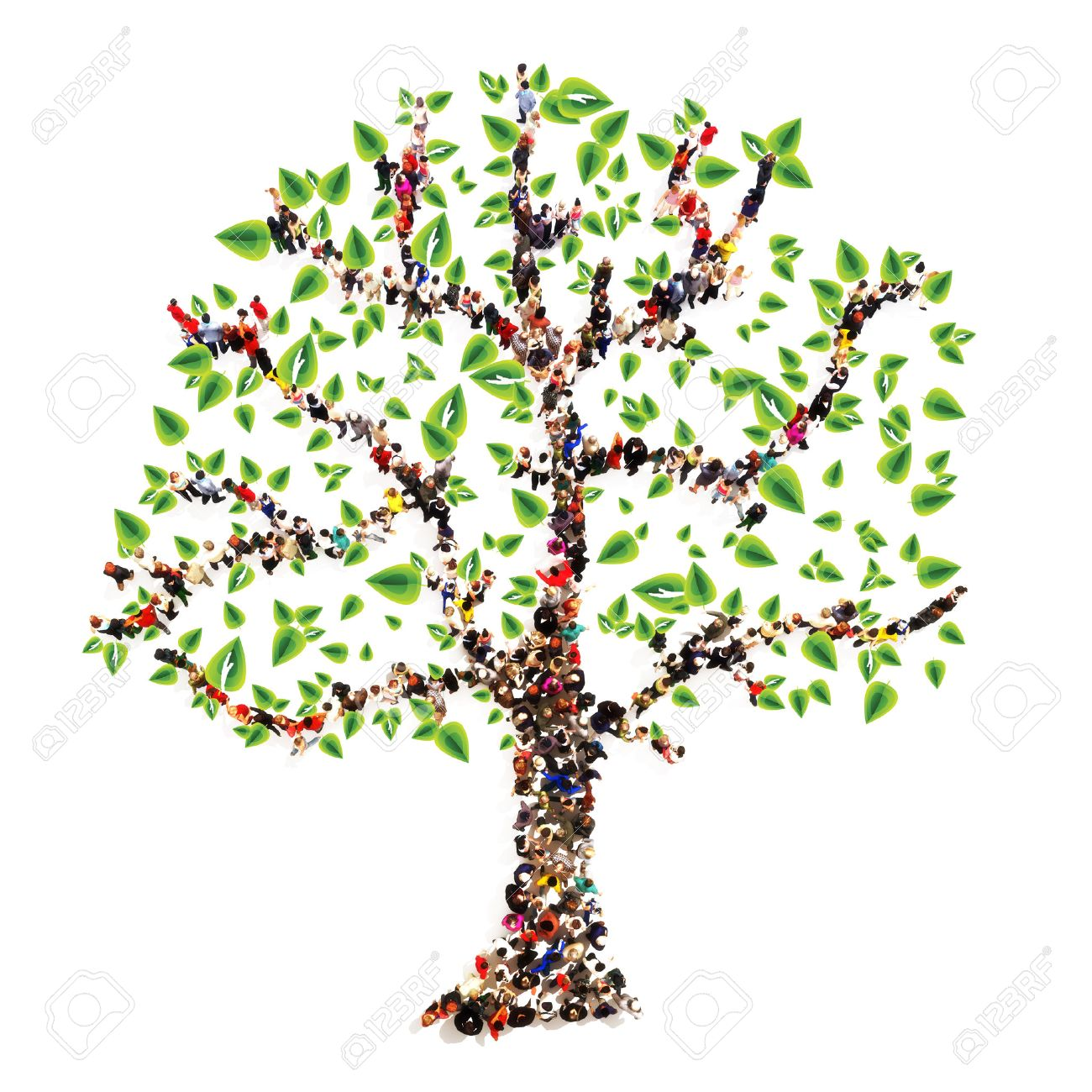 Family Tree Images & Stock Pictures. Royalty Free Family Tree ...