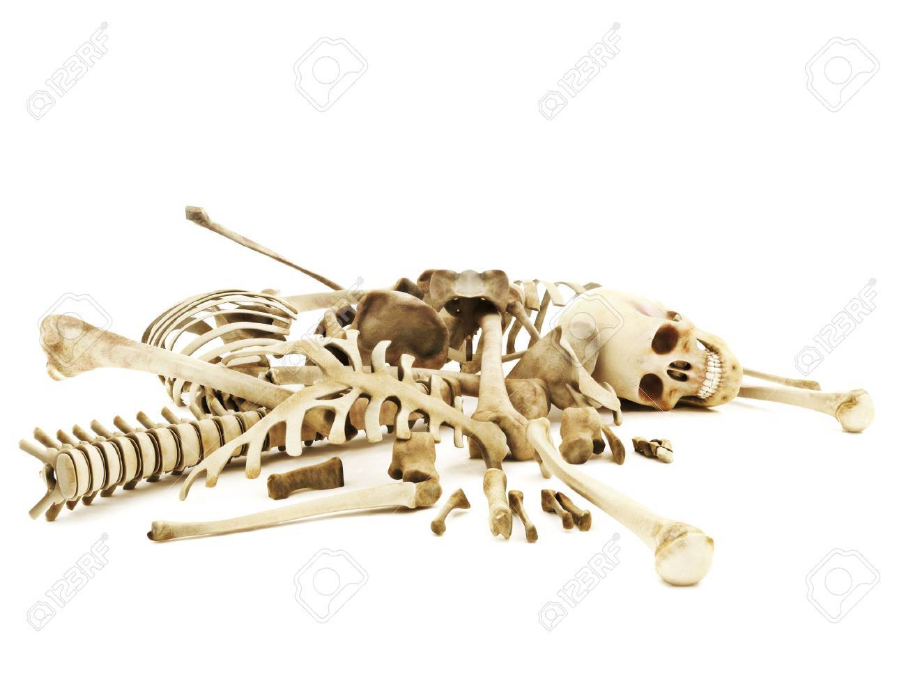 Pile of bones, photo realistic 3d rendering on a isolated white background. Standard-Bild - 52415103