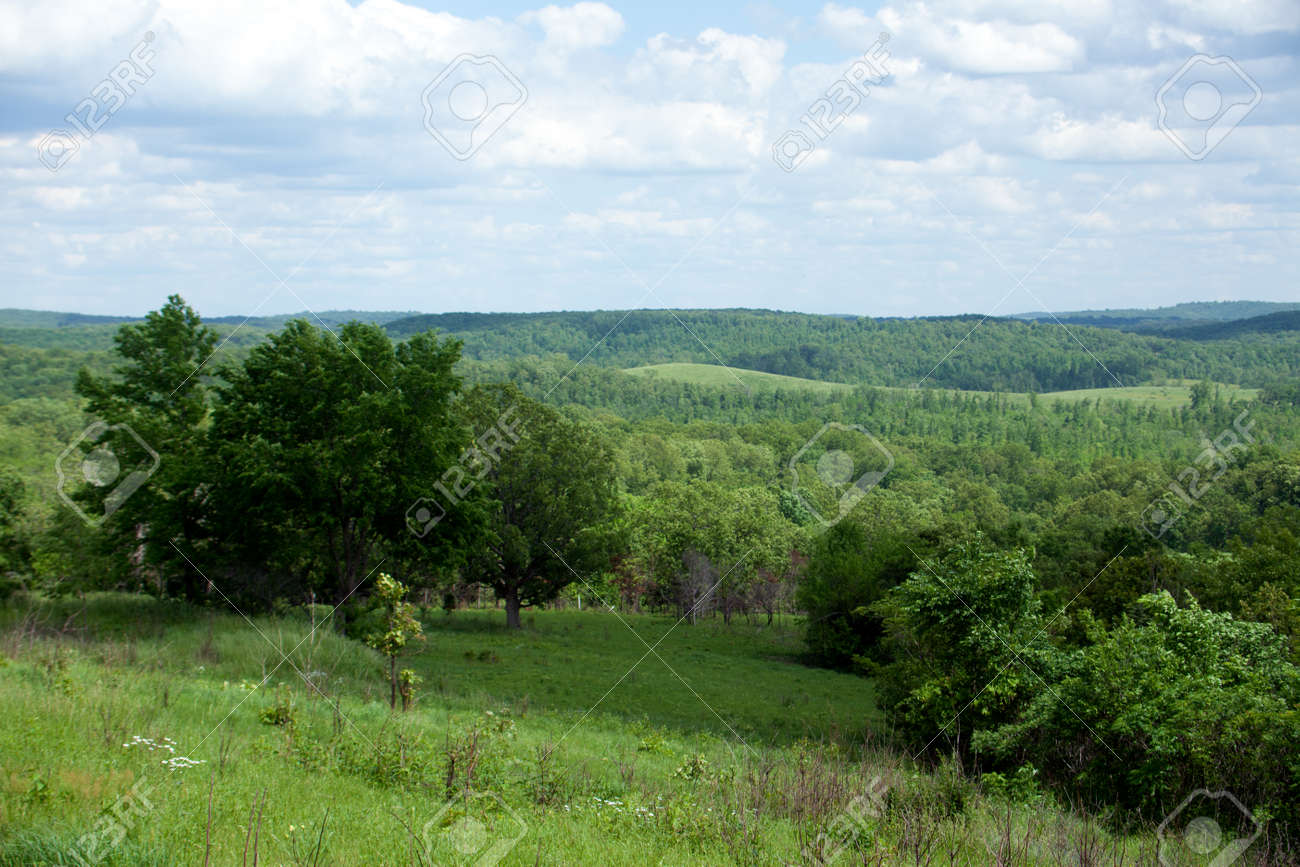 A beautiful summer southern Missouri landscape