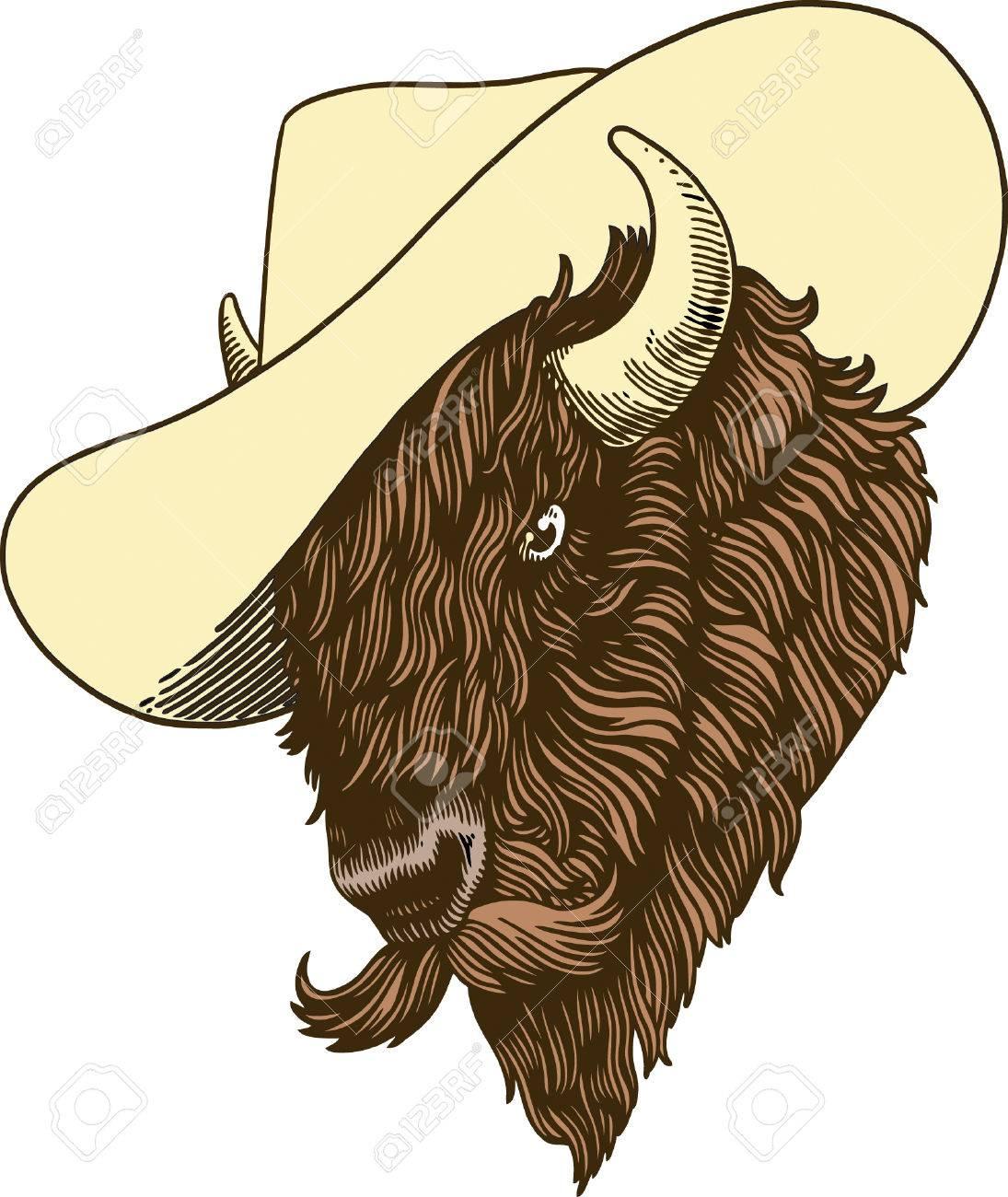 Buffalo Stock Vector - 23965434