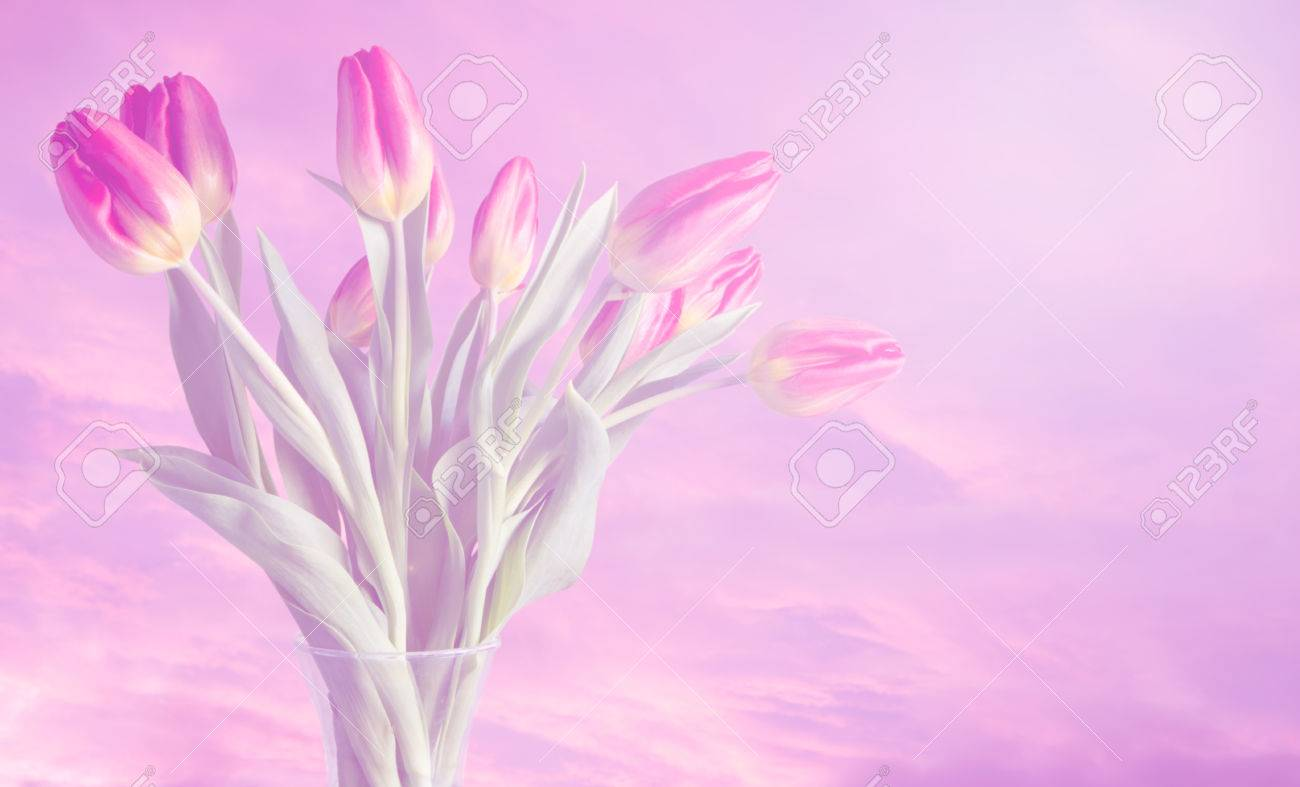 Vase Of Tulips With Dreamy Colours And Soft Pink Cloud Background