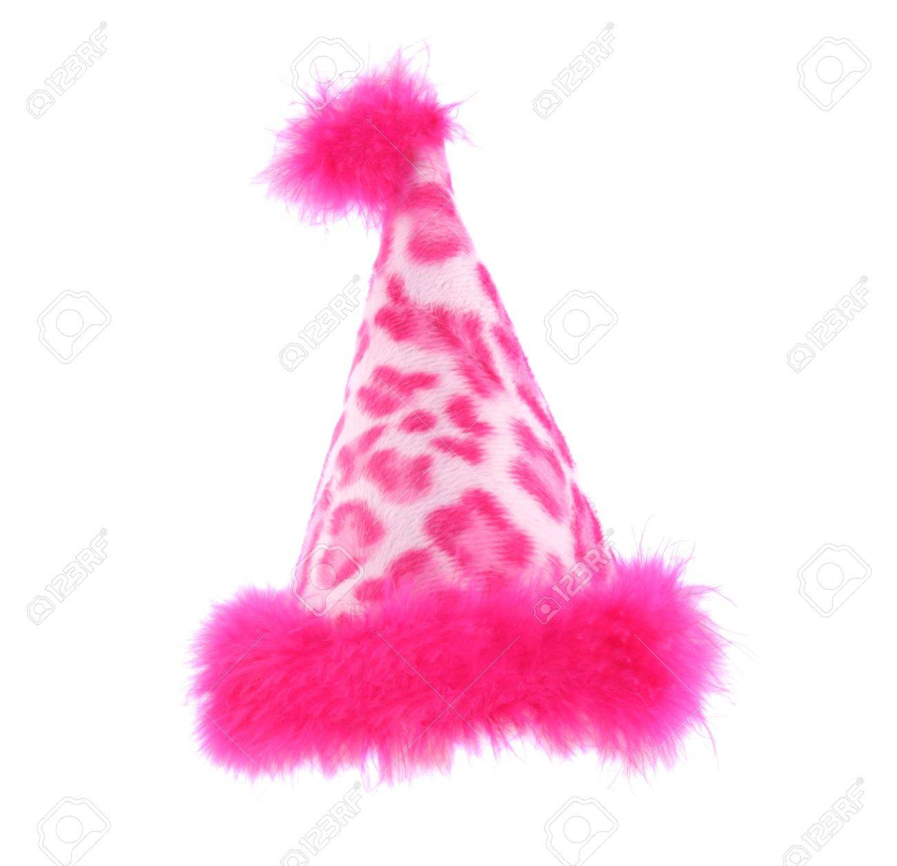 Party hat that is perfect for a pet or person Stock Photo - 1349678