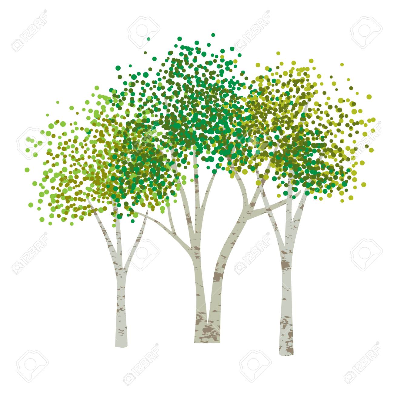 Hand Drawn Aspen Birch Vector Trees Clipart Royalty Free Cliparts
